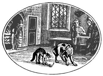 animal behavior illustration