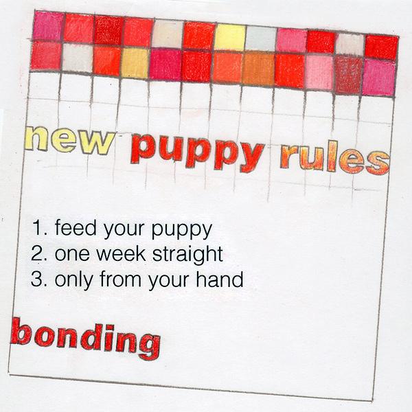 newpuppyrules_bonding