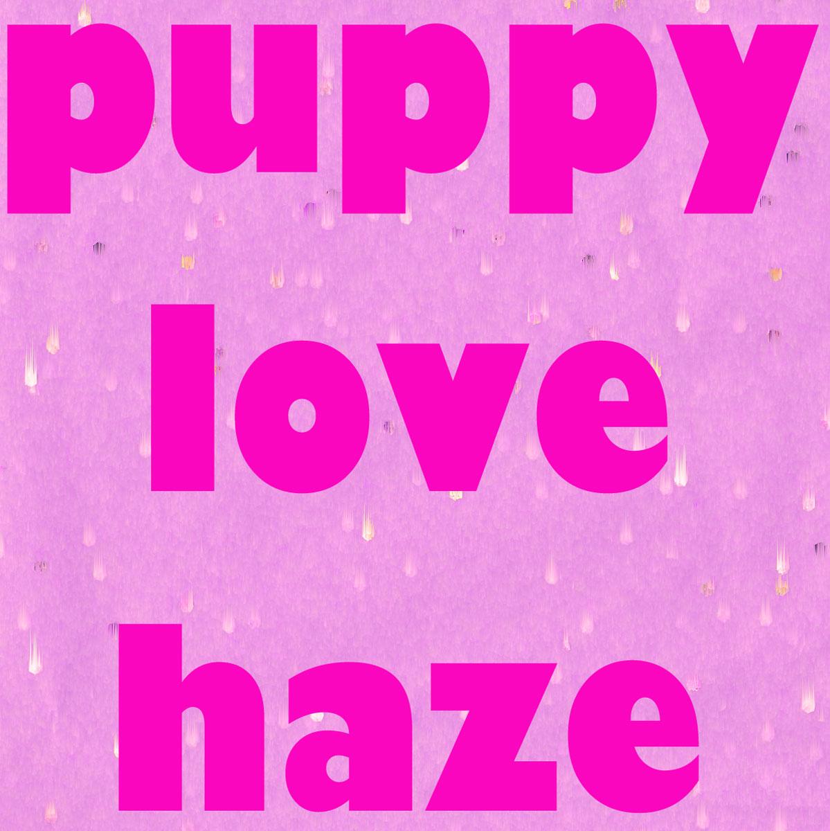 puppy_love_hazeWP